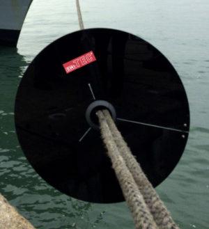Rattenschutz Berufsschifffahrt